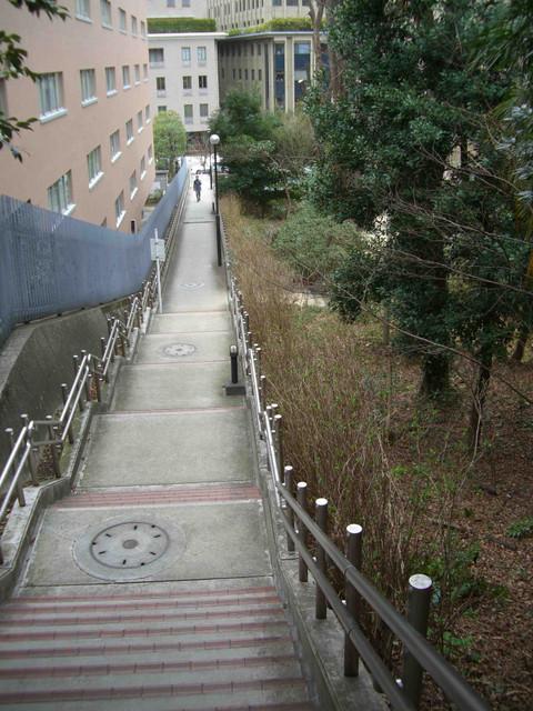 紀尾井町住宅の脇からバカナールへ向かう。